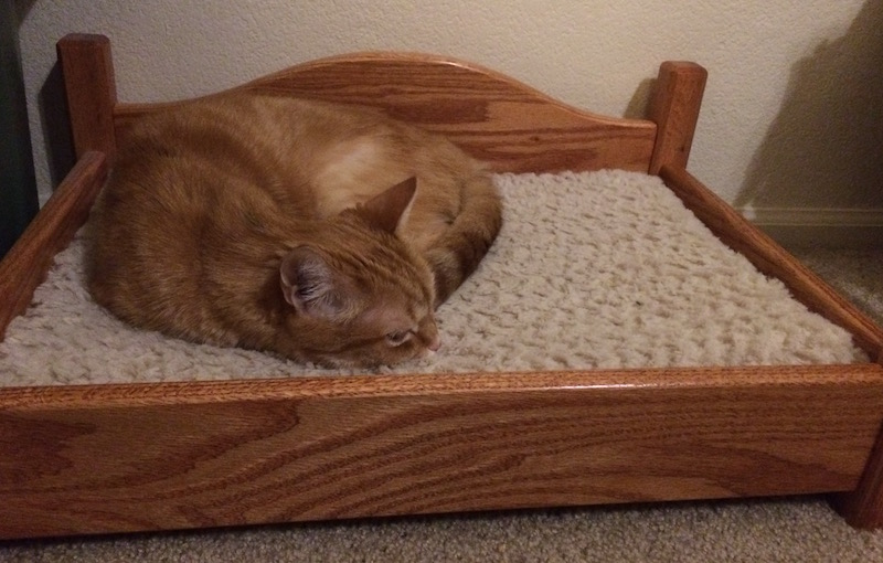 an orange cat sleeping on a wooden cat bed.